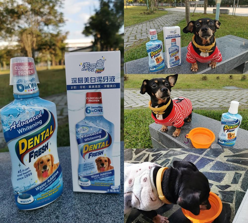 (寵物)潔牙白-毛孩健康館,潔牙白深層美白潔牙液,用喝的免刷牙,平時幫助潔牙維護牙齒牙齦健康,貓狗皆可方便使用 @Nancy將的生活筆計本