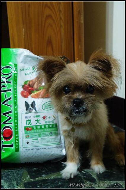 (體驗)優格®寵物食譜,成犬羊肉加米-毛髮柔亮配方-小寶兄開心吃 @Nancy將的生活筆計本